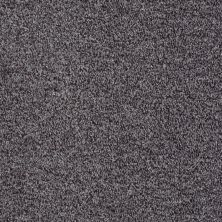 Shaw Floors Value Collections Explore With Me Texture Net Storm 00504_E0850
