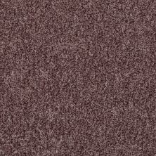 Shaw Floors Value Collections Explore With Me Texture Net Rye 00702_E0850