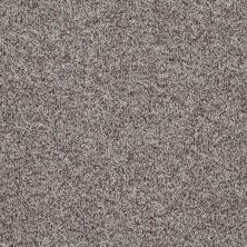 Shaw Floors Value Collections Explore With Me Texture Net Fleece 00704_E0850