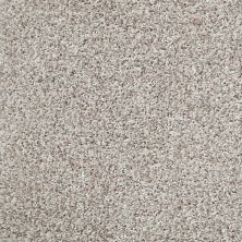 Shaw Floors Color Flair Resort Sand 00101_E0852