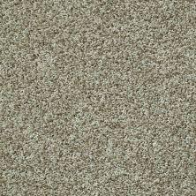 Shaw Floors Color Flair Citrus Splash 00300_E0852