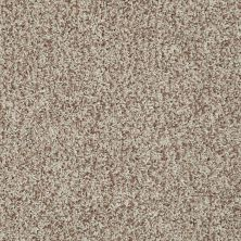 Shaw Floors Color Flair Honey Butter 00700_E0852