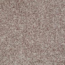 Shaw Floors Color Flair Toast 00702_E0852