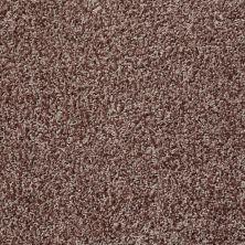 Shaw Floors Color Flair Log Cabin 00703_E0852