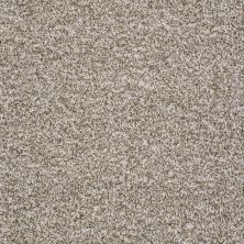 Shaw Floors Value Collections Admire Me Net Taupe Stone 00113_E0857