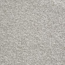 Shaw Floors Value Collections Treat Me (t) Net Sugar Cube 00100_E0858