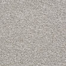 Shaw Floors Value Collections Treat Me (t) Net Oatmeal 00120_E0858