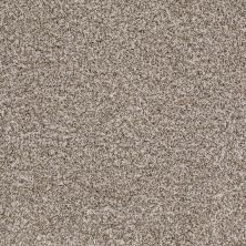 Shaw Floors Value Collections Treat Me (t) Net Oyster 00151_E0858