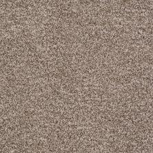 Shaw Floors Value Collections Treat Me (t) Net Burlap 00250_E0858