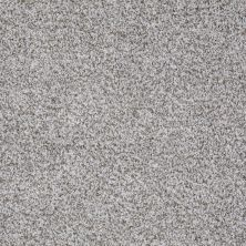 Shaw Floors Value Collections Treat Me (t) Net Brushed Nickel 00520_E0858