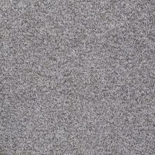 Shaw Floors Value Collections Treat Me (t) Net Silver Spoon 00521_E0858