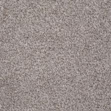 Shaw Floors Value Collections Treat Me (t) Net Toffee 00720_E0858