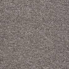 Shaw Floors Value Collections Treat Me (t) Net Buffalo 00750_E0858