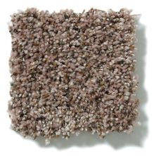 Shaw Floors Value Collections Power Buy 76 Pecan Pie 00706_E0860