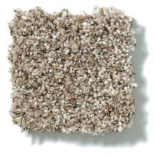 Shaw Floors Value Collections Power Buy 176 Wheat 00104_E0861