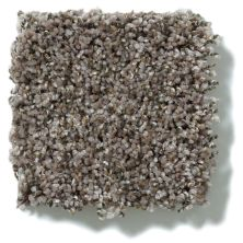 Shaw Floors Value Collections Power Buy 176 Fawn 00712_E0861