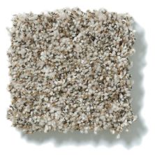 Shaw Floors Value Collections Power Buy 276 Sand Dune 00105_E0862