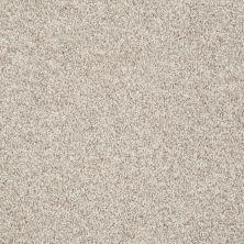 Shaw Floors Value Collections Dazzle Me Texture Net Porcelain 00101_E0884