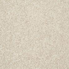 Shaw Floors Value Collections Dazzle Me Texture Net Moonscape 00102_E0884
