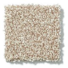 Shaw Floors Value Collections Dazzle Me Texture Net Bamboo 00103_E0884