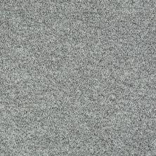 Shaw Floors Value Collections Dazzle Me Texture Net Zen 00300_E0884