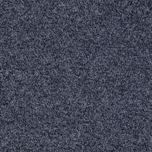 Shaw Floors Value Collections Dazzle Me Texture Net Night Sail 00402_E0884