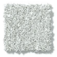 Shaw Floors Value Collections Dazzle Me Texture Net Silver Glitz 00500_E0884