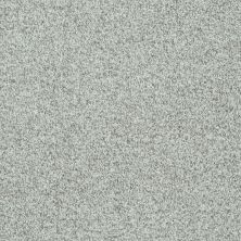 Shaw Floors Value Collections Dazzle Me Texture Net Portobello 00501_E0884