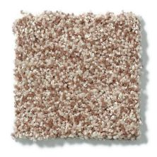Shaw Floors Value Collections Dazzle Me Texture Net Camel 00700_E0884