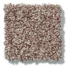 Shaw Floors Value Collections Dazzle Me Texture Net Pecan 00701_E0884