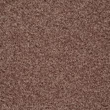 Shaw Floors Value Collections Dazzle Me Texture Net Saddle 00703_E0884