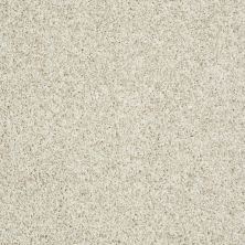 Shaw Floors Value Collections Dazzle Me Twist Net Frosting 00110_E0885