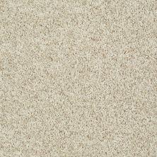Shaw Floors Value Collections Dazzle Me Twist Net Cream 00112_E0885