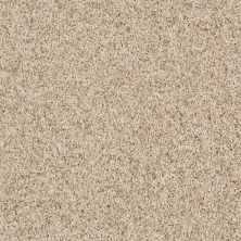 Shaw Floors Value Collections Dazzle Me Twist Net Ecru 00113_E0885