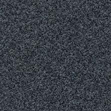Shaw Floors Value Collections Dazzle Me Twist Net Indigo Mood 00412_E0885