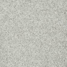 Shaw Floors Value Collections Dazzle Me Twist Net Artillery 00510_E0885