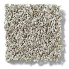 Shaw Floors Value Collections Dazzle Me Twist Net Quartz 00511_E0885