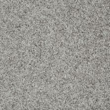 Shaw Floors Value Collections Dazzle Me Twist Net Pewter 00512_E0885