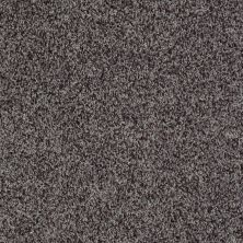Shaw Floors Value Collections Dazzle Me Twist Net Steel Wool 00514_E0885