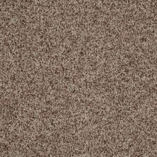 Shaw Floors Value Collections Dazzle Me Twist Net Treeline 00711_E0885