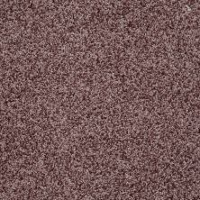 Shaw Floors Value Collections Dazzle Me Twist Net Fresh Coffee 00712_E0885