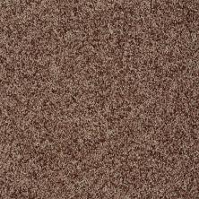 Shaw Floors Value Collections Dazzle Me Twist Net Chestnut 00713_E0885
