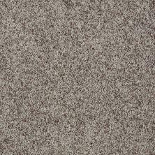 Shaw Floors Value Collections Dazzle Me Twist Net Townhouse 00714_E0885