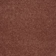 Shaw Floors Value Collections Keep Me II Net Arabian Spice 00601_E0890