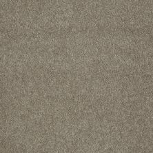 Shaw Floors Value Collections Keep Me II Net Tea Stain 00702_E0890