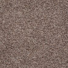 Shaw Floors Value Collections Remember Me (b) Net Brown Sugar 00730_E0891