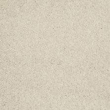 Shaw Floors Value Collections Remember Me (s) Net Fresh Cream 00142_E0892