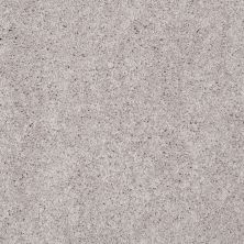 Shaw Floors Value Collections Remember Me (s) Net Putty 00146_E0892