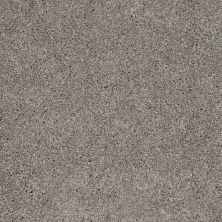 Shaw Floors Value Collections Remember Me (s) Net Woodland Trail 00147_E0892