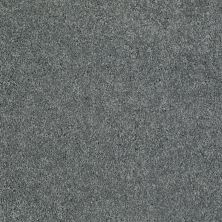 Shaw Floors Value Collections Remember Me (s) Net Melted Steel 00543_E0892